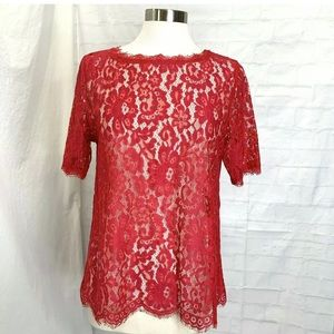 Anthropologie Venessa Virginia L Top Tunic  Lace